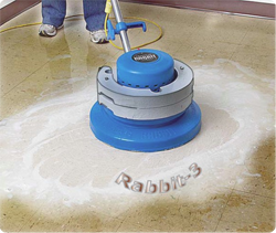 grout cleaning services Oakville
